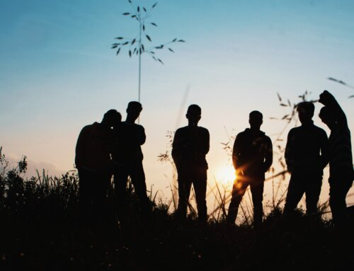 Plus de 550 jeunes pyrénéens répondent à la consultation publique du Forum transpyrénéen de la jeunesse